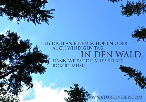 NATURKINDER_leg_dich_in_den_wald