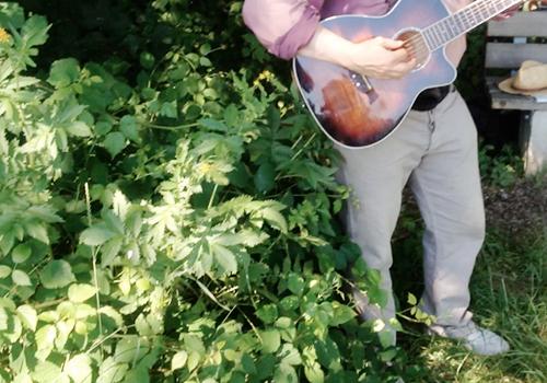 NATURKINDER_waldmusik