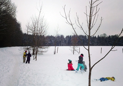 NATURKINDER: GRÜNZEUG: Spaziergang im Winterwald