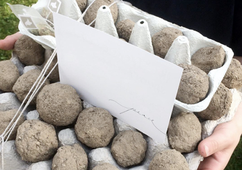 NATURKINDER: Making our own seed bombs