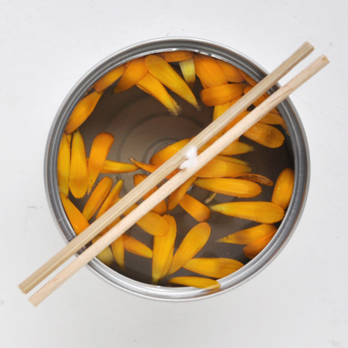 NATURKINDER: Making Calendula Candles 0775