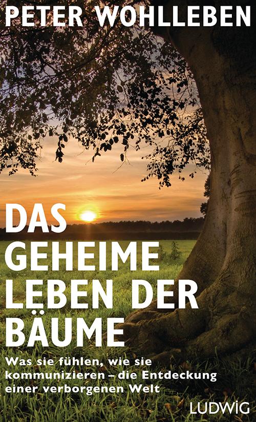 Wohlleben_PDas_geheime_Leben_der_Baeume_164974
