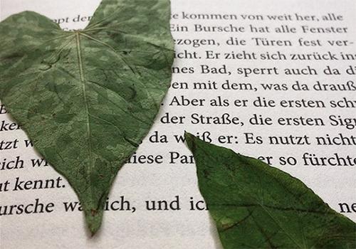 Herz_licht_02