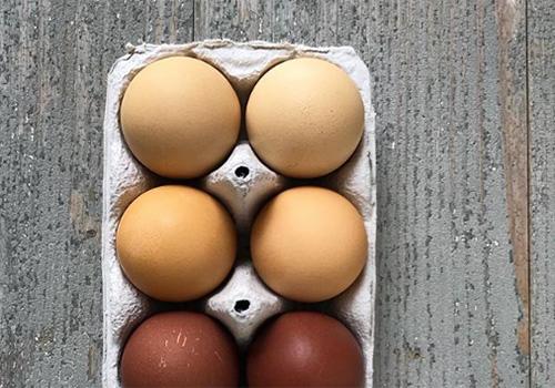 NATURKINDER: Oster Eier mit Naturfarben färben (Kümmel, Kurkuma, Grüner Tee)   Dyeing Easter Eggs with Natural Colors (Cumin, Turmeric, Green Tea)