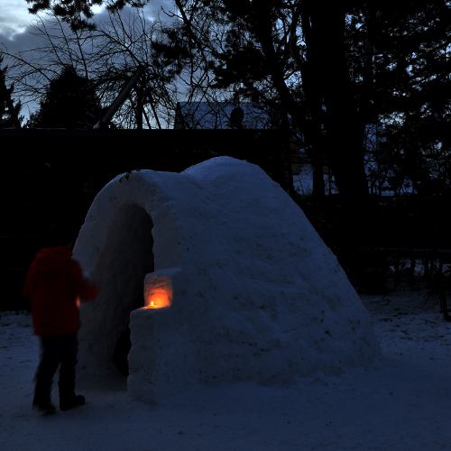 NATURKINDER: Building a Snow House with Kids 0278