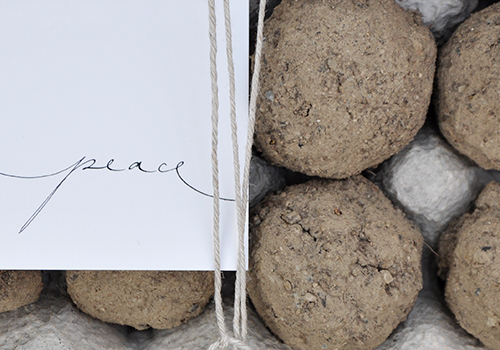 NATURKINDER: Making our own seed bombs 2081