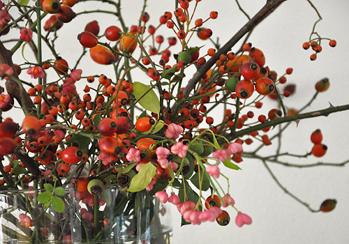 NATURKINDER: Rosehips 3872