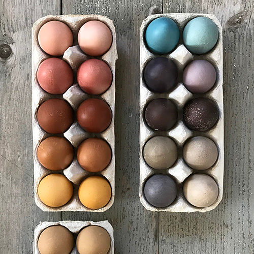 NATURKINDER: Oster Eier mit Naturfarben färben   Dyeing Easter Eggs with Natural Colors 3596