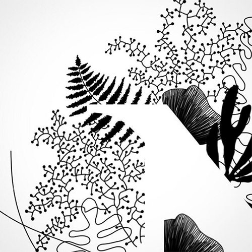 NATURKINDER   Illustration